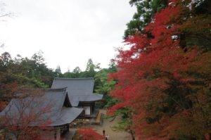 2012京都旅行二日目10