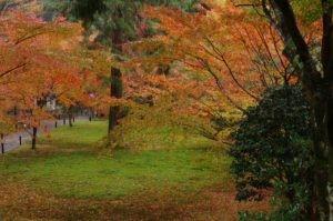 2012京都旅行初日04