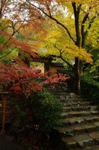 2012京都旅行初日06