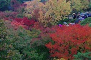 2012京都旅行初日14