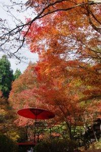 2012京都旅行二日目07