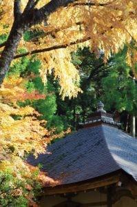 2012京都旅行二日目06