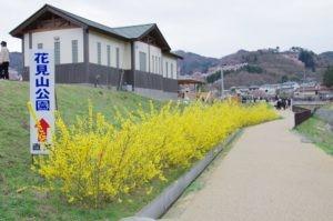 2012花見山公園01