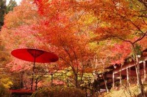 2012京都旅行二日目08
