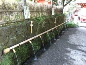 2016浅間大社さわやかカブラヲ10