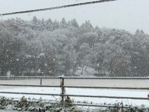 2016hatsuyuki_04
